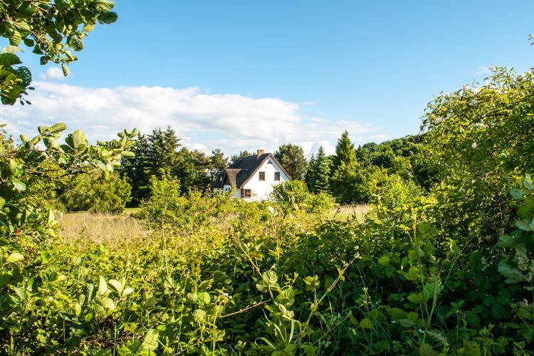 Nordansicht Dat Witte Hus Ferienwohnungen Moritzdorf